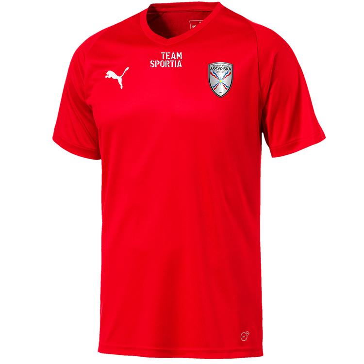 Assyriska BK Puma Tränings T-Shirt SR