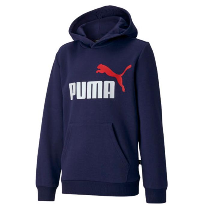 Puma Ess 2 Col Hoody Fl B