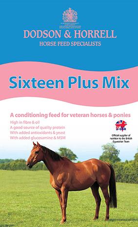 Sixteen Plus Mix