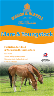 Mare & Youngstock mix
