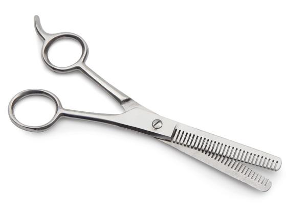 Mane Thinning Scissors