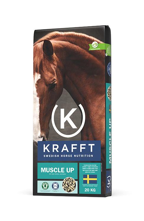 Krafft Muscle Up
