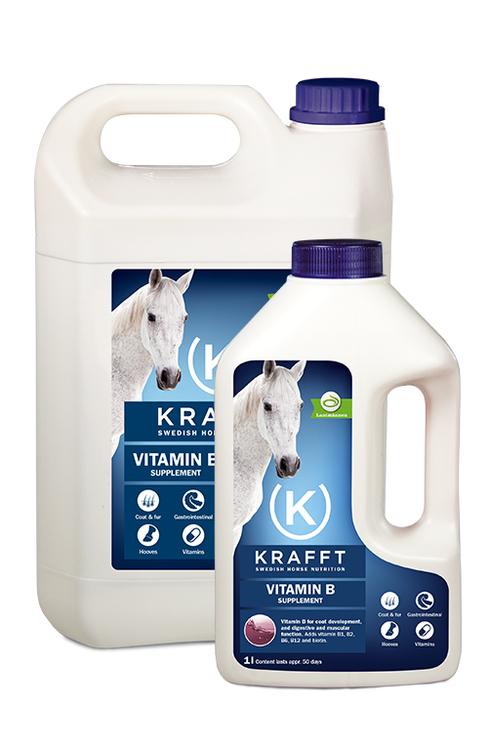 Krafft Vitamin B 1L