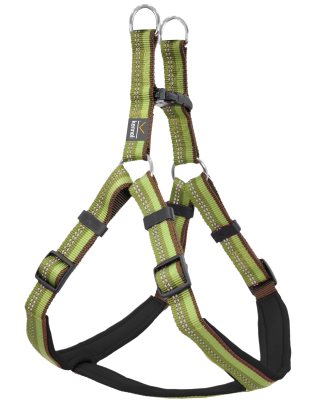 Dog Harness Step in Active