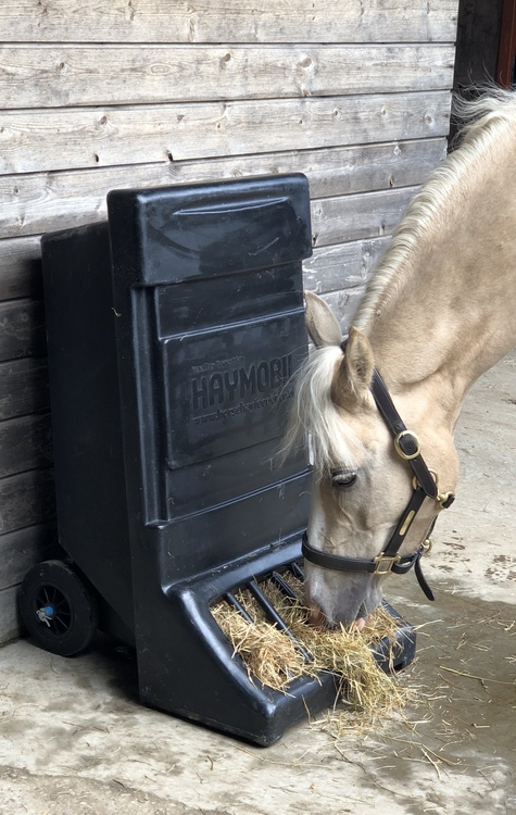 Portable hay feeder
