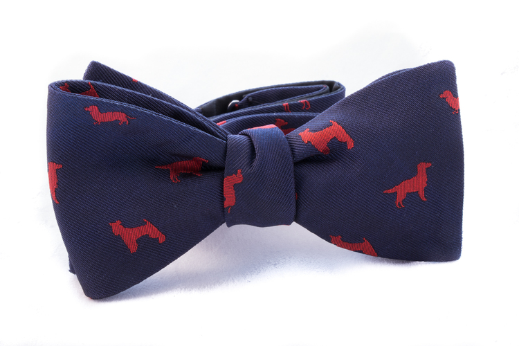 Self tie Silk Dogs - Navy Blue/Red