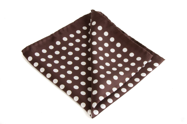 Silk Polka Dot - Brown/White