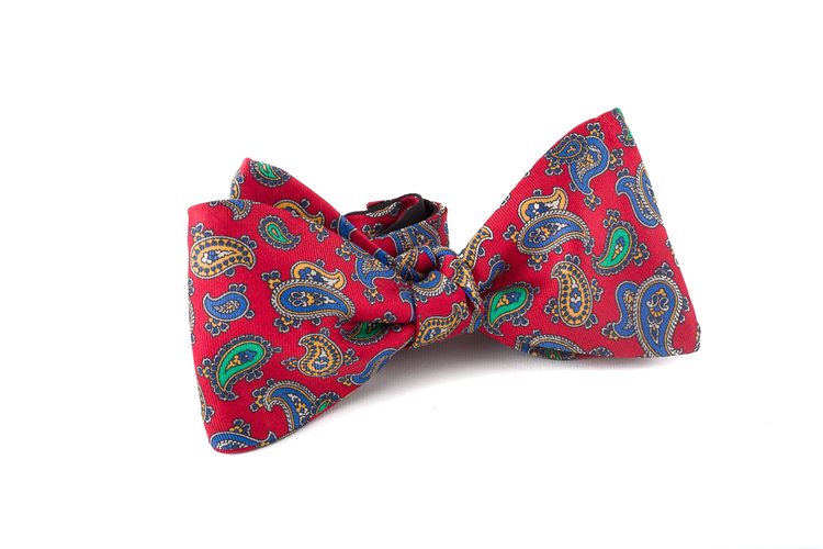 Self tie Silk Paisley - Red/Navy Blue/Green/Yellow
