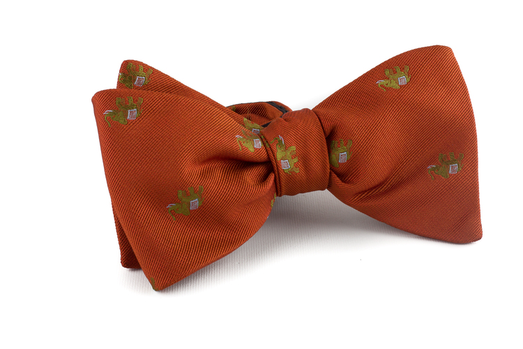 Self tie Silk Elephant - Orange/Green