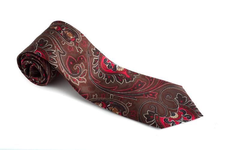 Paisley Vintage Silk Tie - Brown/Red