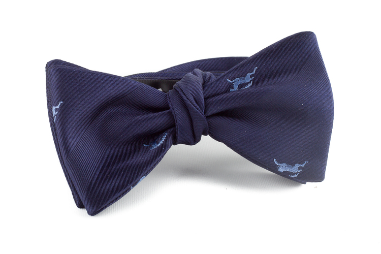 Capricorn Silk Bow Tie - Navy Blue/Light Blue