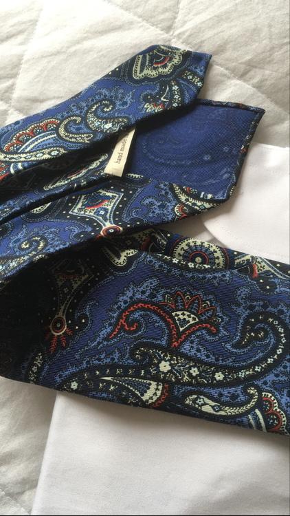 Paisley Printed Silk Tie - Untipped - Blue/Red