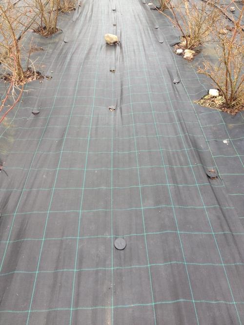 2 st MARKTÄCKVÄV 100 meter x 1,3  m bred. Fraktfritt