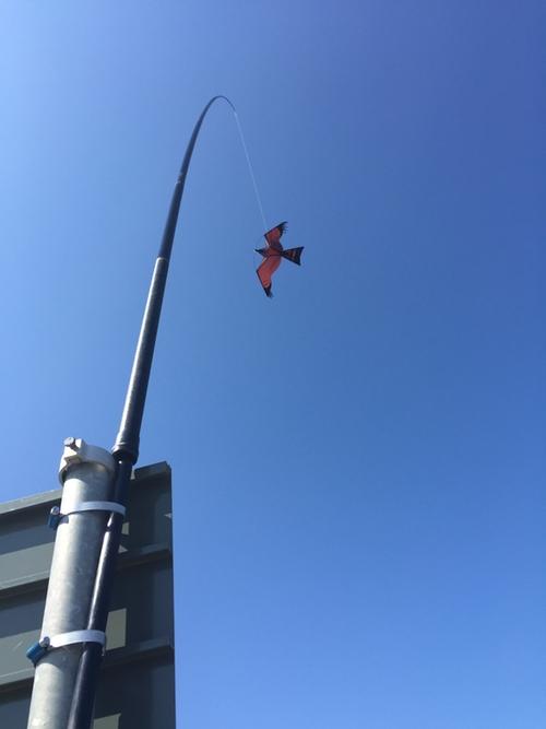 Fågelskrämma med drake 5 st 5 meter