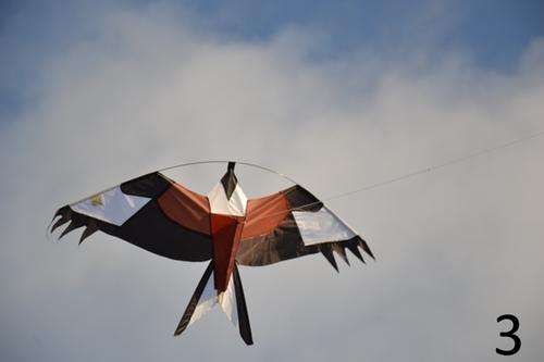2 pack 6 meter Fågelskrämma Komplett med 2 olika drakar