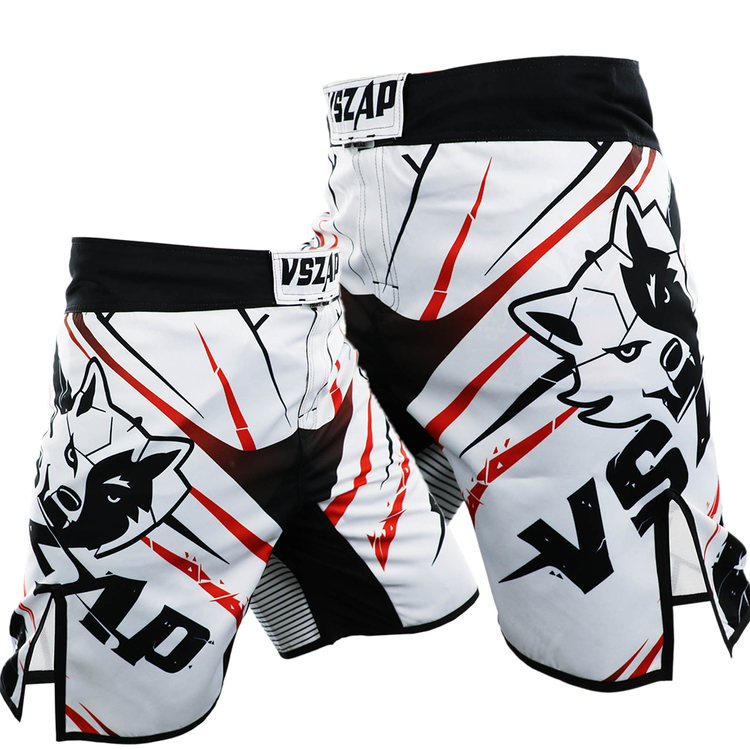 VSZAP MMA Boxing Motion