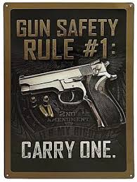 Gun Safety Rule #1