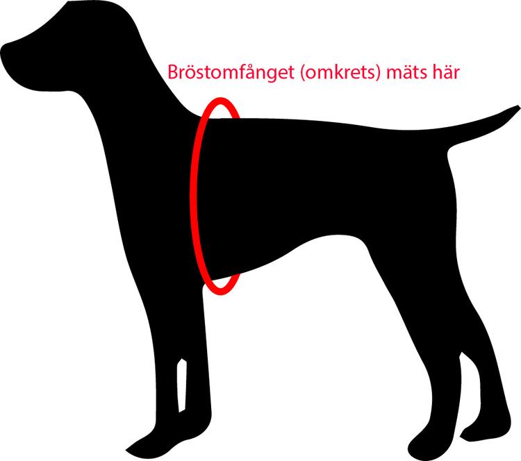 Flytväst hund Ezydog Röd