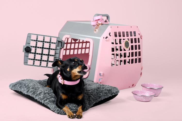 Mim Care2 Pink edition Large