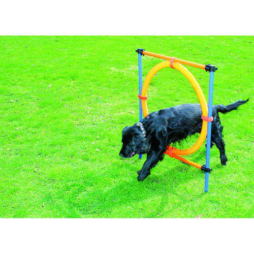 Hund agility hinder med ring 55cm/diameter