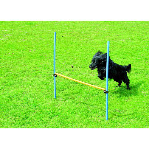 Hund agility hinder höjd 116cm