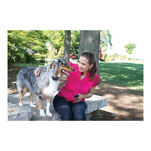 Antiskallhalsband för hund fjärrstyrt vibrerande