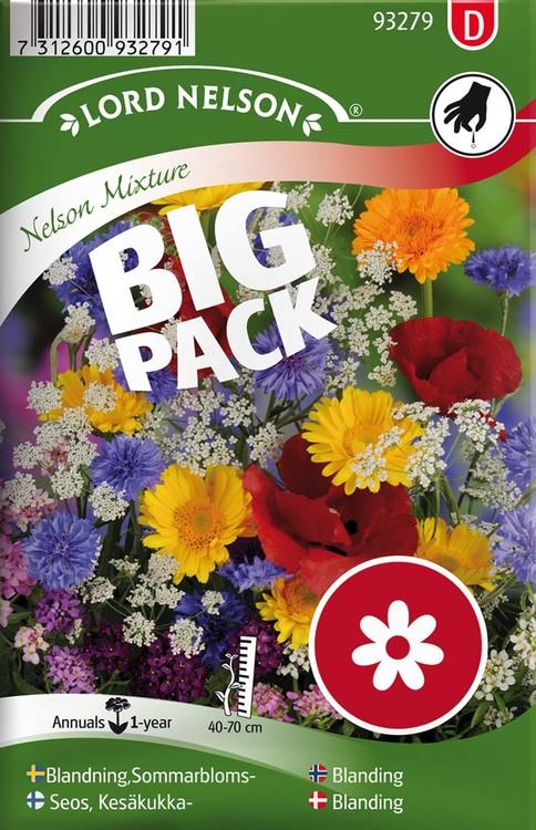 Mix, Sommarblommor,bl.färger. Big Pack