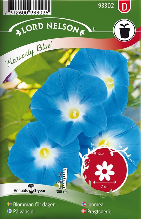 Blomman för dagen, Heavenly Blue