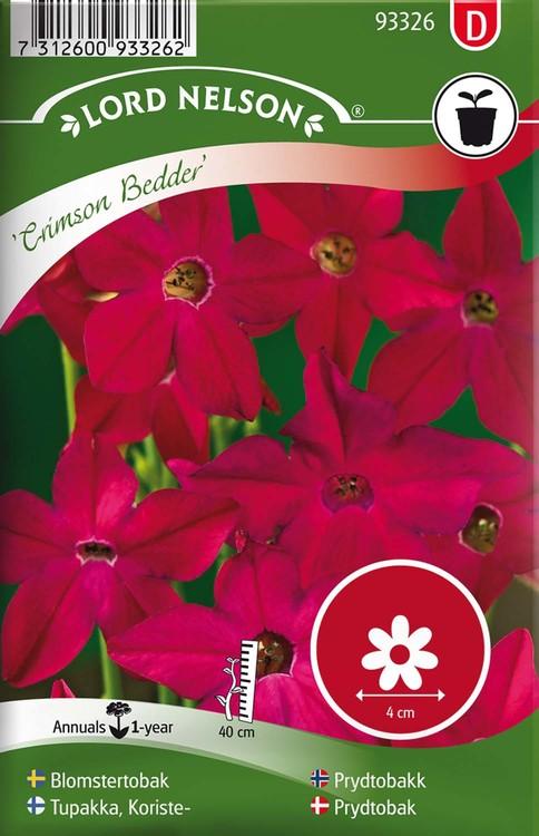 Blomstertobak, Crimson Bedder, röd