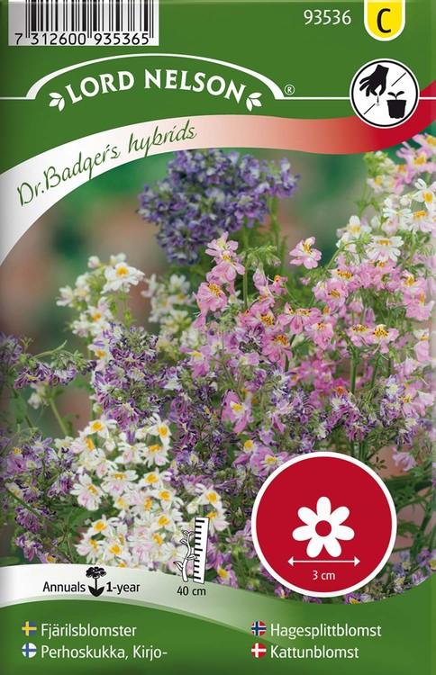 Fjärilsblomster, Dr.Badger's hybr.bl.färger