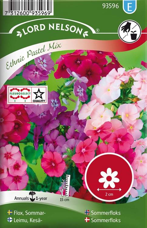 Flox, Sommar-, Ethnie Pastel Mix