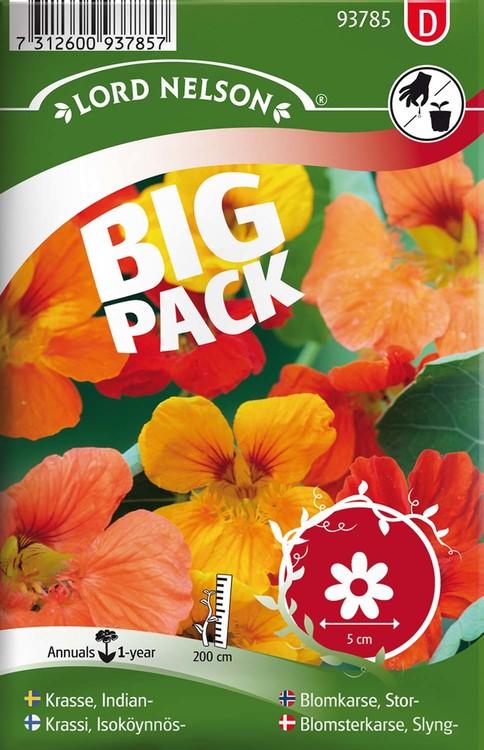 Krasse, Slinger-,  bl färger Big Pack