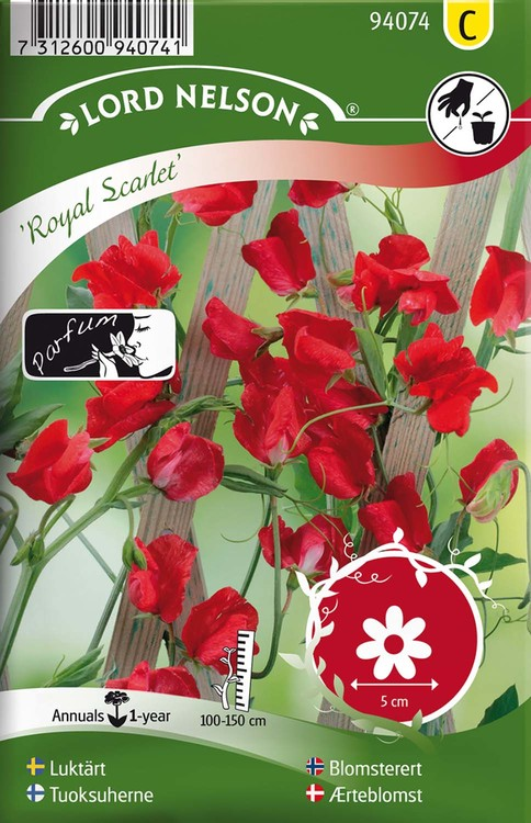 Luktärt, Royal Scarlet, röd