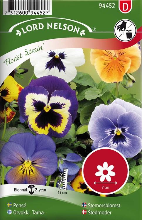 Pensé, Florist Strain, storbl. blandade färger