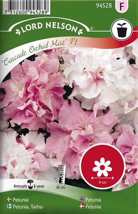 Petunia, Cascade Orchid Mist F1, dubbel