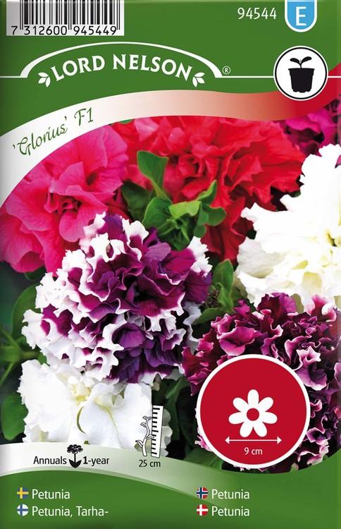 Petunia, Glorious F1, dubbel, blandade färger