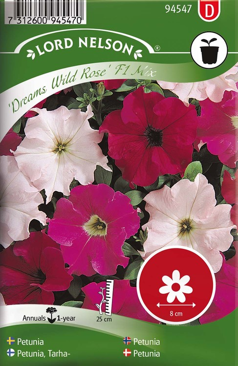 Petunia, Dreams Wild Rose Mix