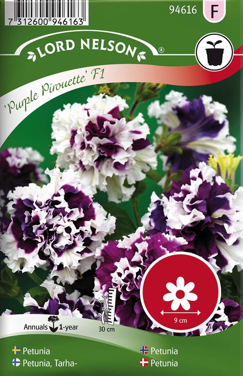 Petunia, Purple Pirouette F1, dubbel