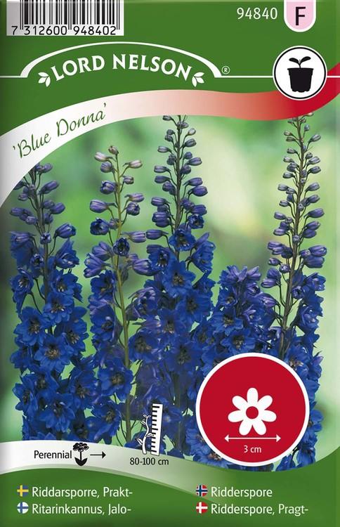 Riddarsporre, Prakt-, Blue Donna