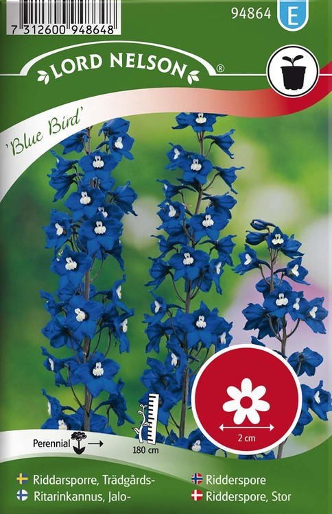Riddarsporre, Trädgårds-, Blue Bird, blå