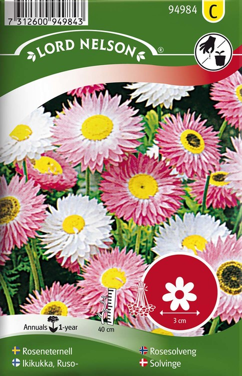Eternell, Rosen-, blandade färger