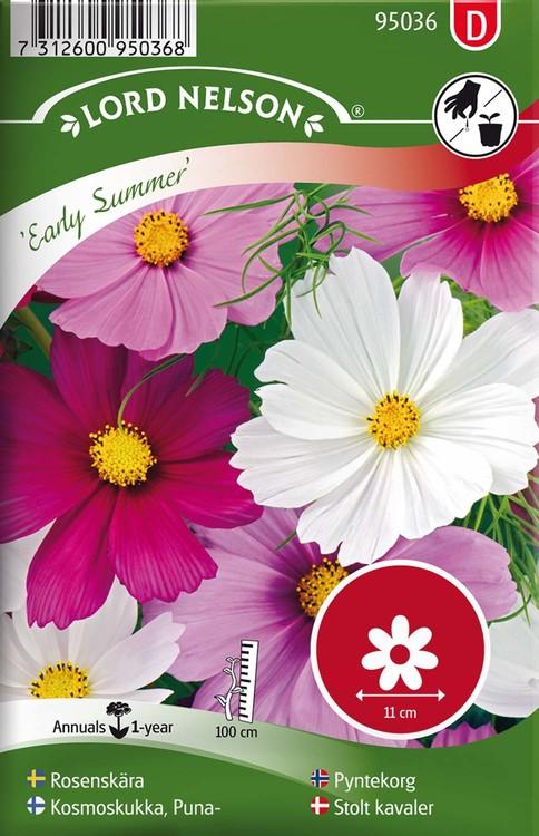Rosenskära, Early Summer, blandade färger