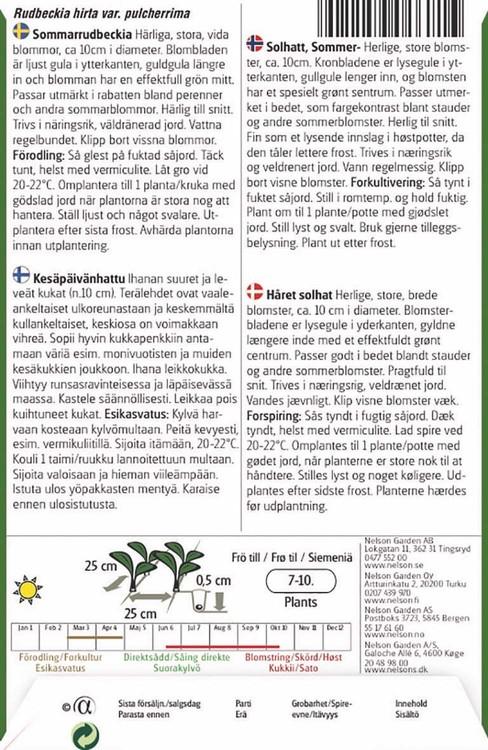 Rudbeckia, Sommar-, Praire Sun