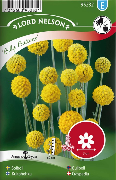 Solboll, Billy Buttons