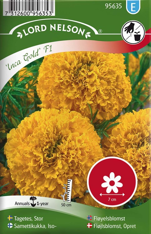 Tagetes, Stor-, Inca Gold F1