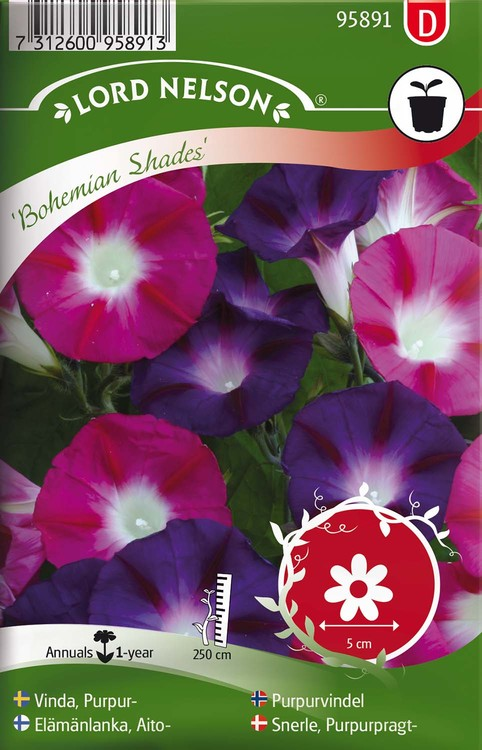 Vinda, Purpur-, Bohemian Shades