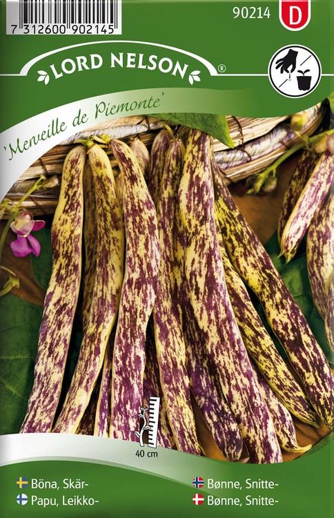 Böna, Skär-, Merveille de Piemonte
