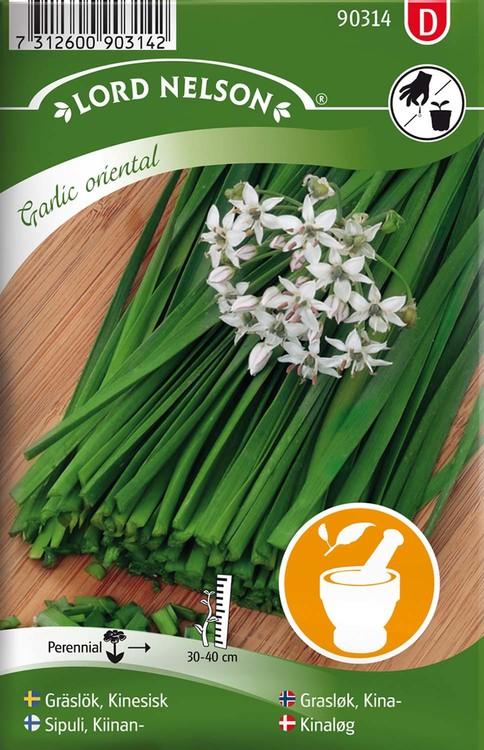 Gräslök, Kinesisk, Garlic oriental