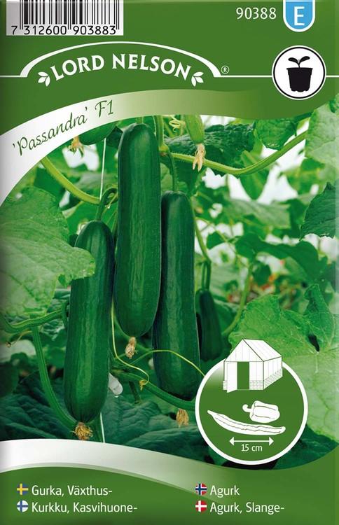 Gurka, Växthus-, Passandra F1