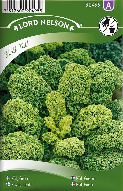 Kål, Grön-, Half Tall